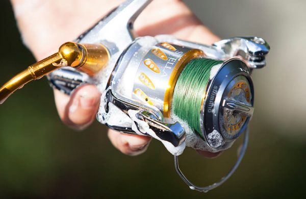 a hand holding a fishing reel